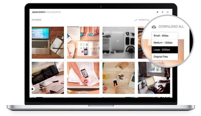 Allow digital delivery of your images to your clients